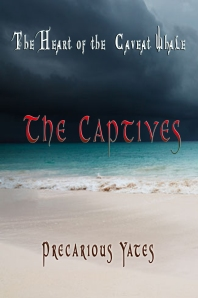 Kindle cover storm 1 The Captives copy